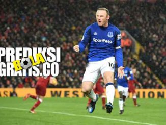 wayne rooney, everton, the toffees, premier league, liga inggris, rooney, manchester united, dc united, mls